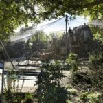 Basel Zoo Webnet Primate Enclosure