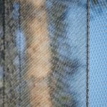 Bois de la Bâtie Aviary Webnet Enclosure