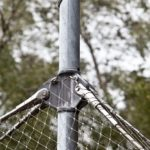 Serengeti Park Hodenhagen Enclosure Webnet Attachment