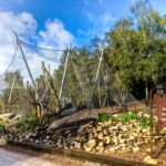Serengeti Park Hodenhagen Webnet Animal Enclosure