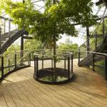 Treetop Masoala Hall Zurich Zoo Stairway Webnet