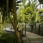 Treetop Masoala Hall Zurich Zoo Walkway