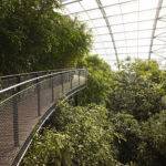 Treetop Masoala Hall Zurich Zoo Webnet Balustrade
