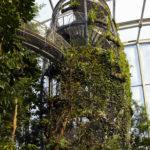 Treetop Masoala Hall Zurich Zoo Webnet Enclosure Stairway