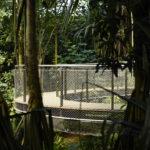 Treetop Masoala Hall Zurich Zoo Webnet Panels