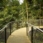 Treetop Masoala Hall Zurich Zoo Webnet Stairs