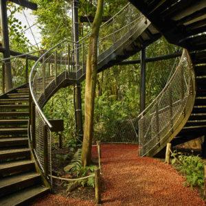 Treetop Masoala Hall, Zurich Zoo (CH)