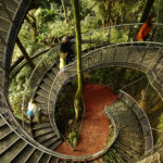 Treetop Masoala Hall Zurich Zoo Webnet Stairway